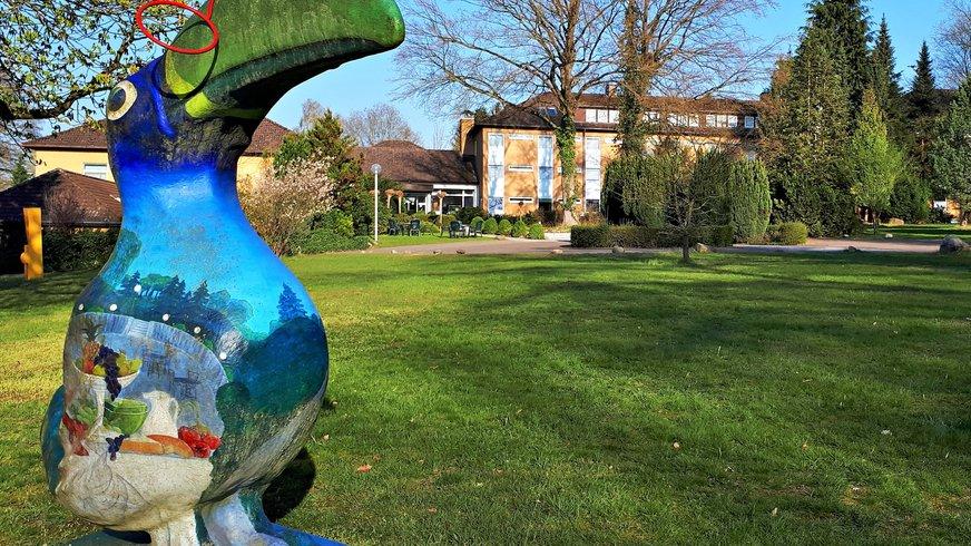 Walsrode Haus Außenansicht Garten Vogel BÜHNE